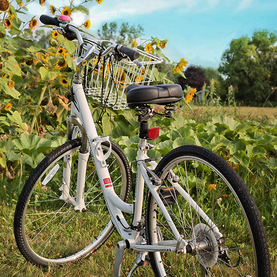 Radfahren in und um Stammersdorf